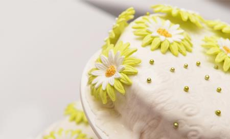 cake design SCONTATO