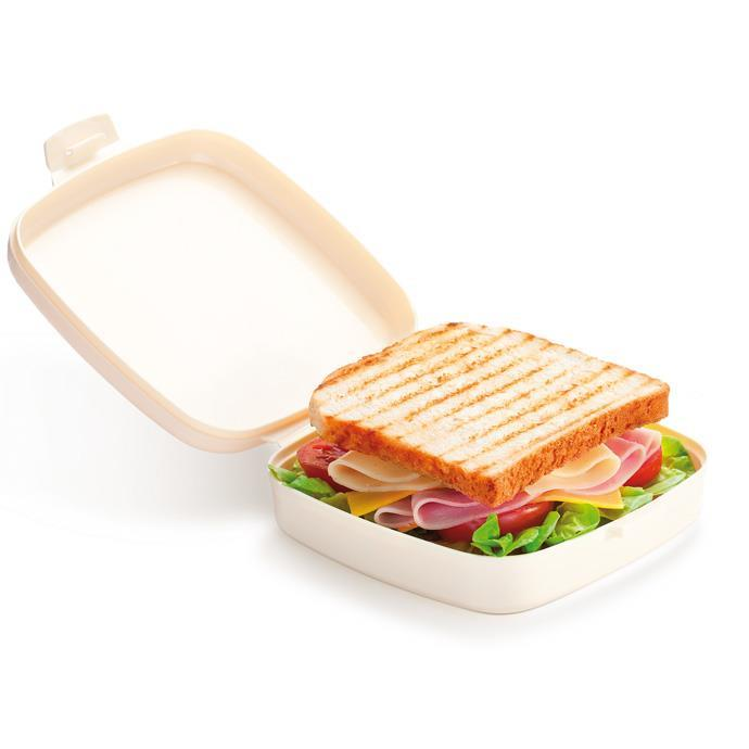 HEALTHY CONTAINER FOR SANDWICH