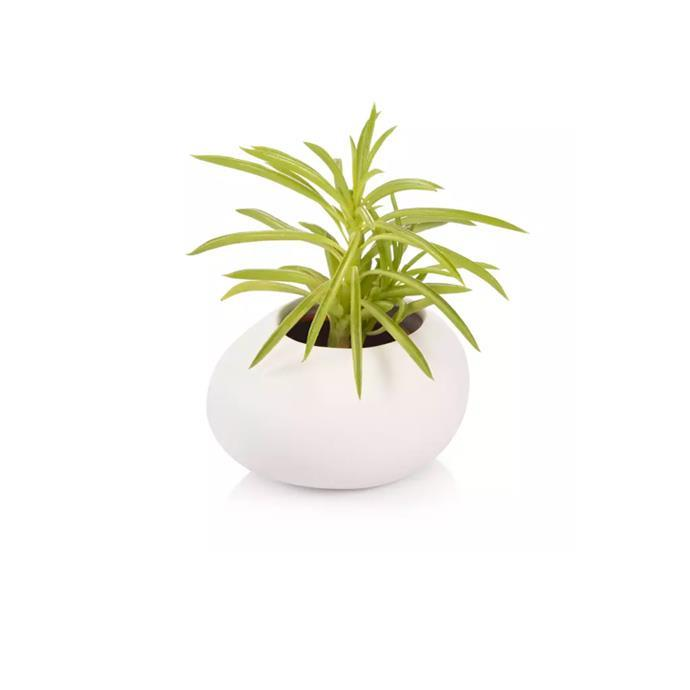 SMALL PLANT POT STONES, WHITE